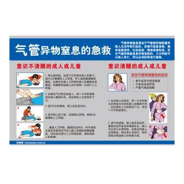 安赛瑞 气管异物窒息的急救,ABS板,75cm×50cm,30424