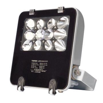 通明电器 TORMIN ZY8101-L30D低压 LED防眩泛光灯具 30W白光5000K含U型支架