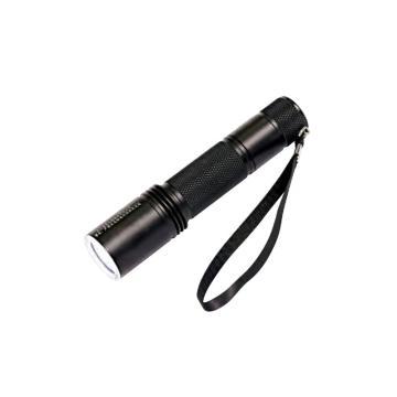 通明电器 LED固态防爆手电筒,BW7300B 功率1W,单位:个