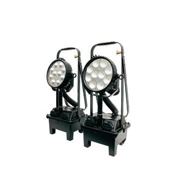 通明电器 LED防爆强光工作灯,BW3210 功率30W,单位:个