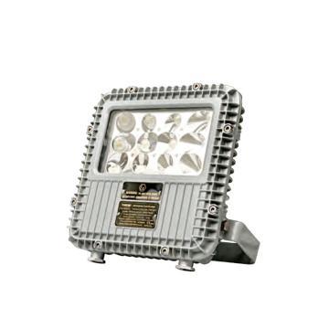 通明电器 BC9101A-L40-L25 LED防爆泛光应急灯 40W+应急25W/70min白光5000K,单位:个