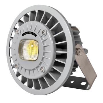 通明电器 BC9308S-L80-200 支架式LED防爆灯 220V 80W白光5000K,单位:个
