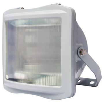 通明电器 防眩通路灯,ZY8100-J100 功率100W白光支架式安装,单位:个