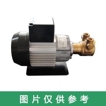 磁力泵业 高压泵,BF12L-513C;242 1978