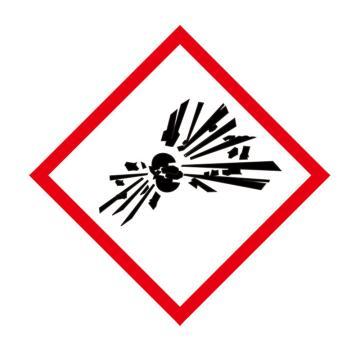 安赛瑞 GHS标签-易爆品,高性能不干胶,100×100mm,39642,50片/包