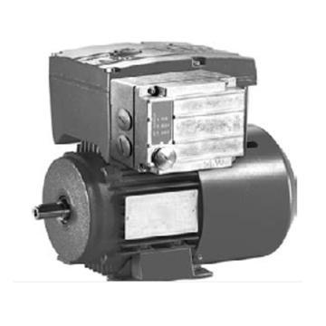 K50/K80 带变频器防爆测量电机 (EDRS80S4/FF/3D/MM07D)