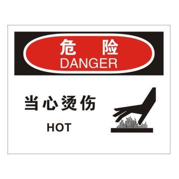 安赛瑞 OSHA危险标识-当心烫伤,不干胶材质,250×315mm,31283
