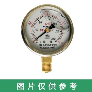 红旗/HONGQI 耐震压力表,YTN-60 0-6MPA G1/4 径向