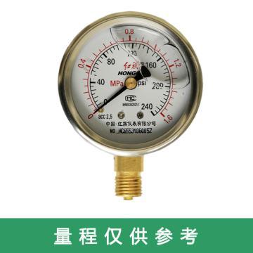 红旗/HONGQI 径向耐震压力表,YTN-60 0-2.5Mpa M14*1.5