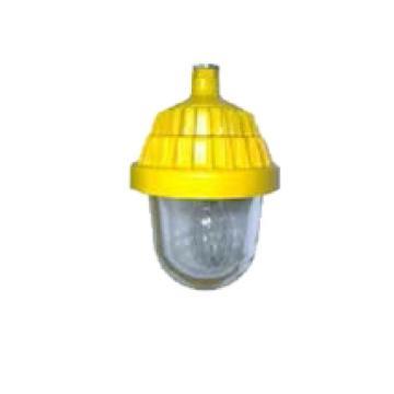 熙捷科技 防爆平台灯,XBG8152 金卤灯功率150W 白光含镇流器电器箱吸顶安装,单位:个