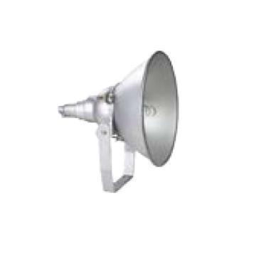 熙捷科技 超强抗震投光灯,XZG9200 金卤灯功率1000W 白光支架安装,单位:个