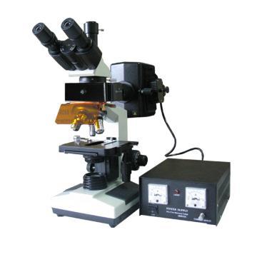三目正置荧光显微镜,LW100FT
