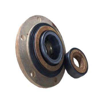 浙江蘭天,脫硫FGD外圍泵機械密封,SZ01-P1E1/01-M080