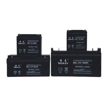 维基 蓄电池,MF12-24