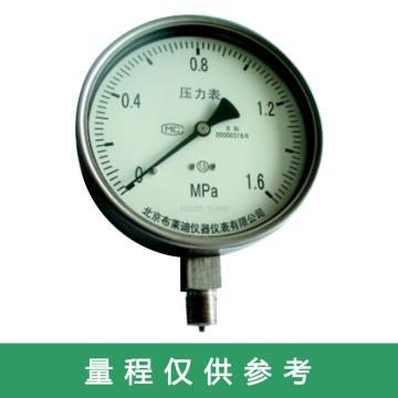 布莱迪 不锈钢膜盒压力表,YEF-160.AO.501.K810.M20