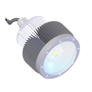 成都圣路 锅炉本体耐高温LED照明灯17SL35-L.A5.A功率35W 白光 吸顶式安装含吸盘,单位:个