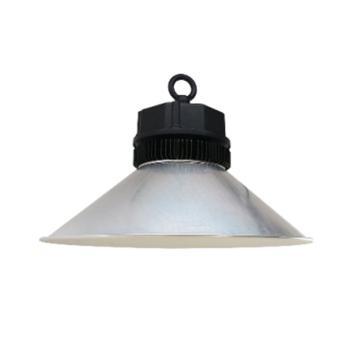 实诺锐 盈光系列LED高天井灯,HB-3030L,30W,5000K,CR80 白光 含吊环含吊链,单位:个