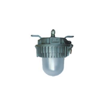凯华电气 LED低压安全通道灯,KHZF804电压AC/DC36V LED 40W 白光 吊环式,单位:个