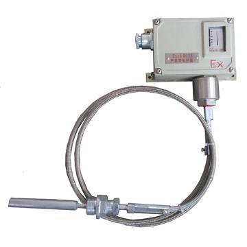 宜昌兆峰 WTYKB 系列礦用防爆溫度控制器,WTYKB-80