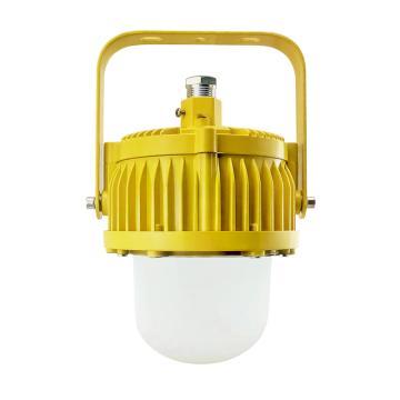 奇辰 LED防爆灯 QC-FB001-A-Ⅰ/L20W,20W 白光6000K 支架式,单位:个