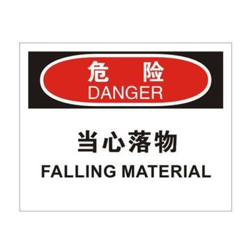 安赛瑞 OSHA危险标识-当心落物,ABS板,250×315mm,31705