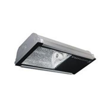 亚牌 亚明 隧道灯具ZQ108b-N100/tc含镇流器触发器电容和灯泡,单位:套