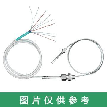 沈阳宇光 铠装铂热电阻,WZPK3-1/1B Pt100,WRNK3-1/1B K