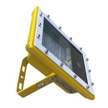 紫光照明 矿用隔爆型LED巷道灯 DGS40/127L(T),40W,单位:个