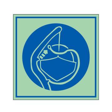 安赛瑞 船用IMO安全标识-释放艇稳索,自发光不干胶,150×150mm,21027
