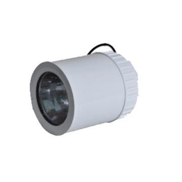 倬屹 棚顶灯 FZY9618-L150 功率金卤灯 150W吊杆式 不含吊杆安装配件,单位:个