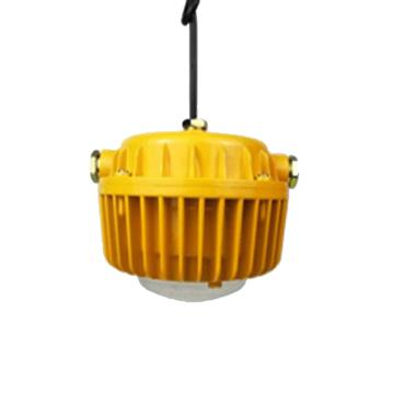 欧辉 LED防爆投(泛)光灯 OHBF8132,LED 60w白光含U型支架,单位:个