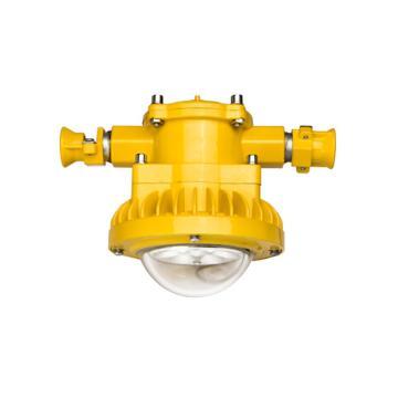 倬屹 LED防爆工作灯 BZY8210-E21 功率LED 21W,单位:个