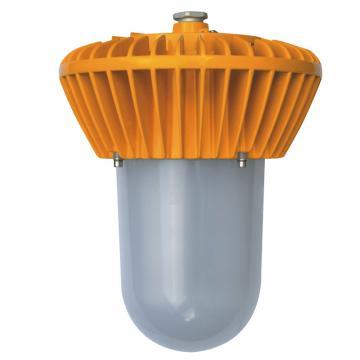 博远 LED防爆泛光灯 BYD9100-50W LED 50W 白光不含弯杆,单位:个