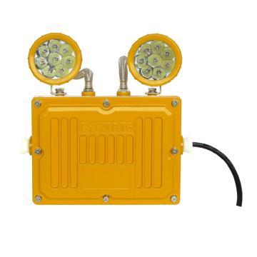 正辉 节能长寿防爆应急工作灯 BXW6229,LED 2X3W,单位:个