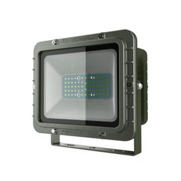 利雄 LED防爆灯(小) GCDSH82 功率40W白光CREE芯片含U型支架,单位:个