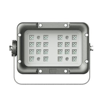 利雄 LED防爆灯(新) GCDSH82 功率60W白光英飞特电源/CREE芯片含U型支架,单位:个