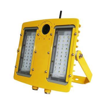 利雄 LED防爆灯 GCDSH8118 功率200W 白光 科锐3535芯片/明纬电源 含U型支架,单位:个