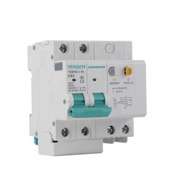 天正TENGEN 微型剩余电流保护断路器 TGB1NLG-63 2P 63A D型 75mA AC 带过压