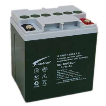 阳光赛能SINONTEAM 蓄电池,6-FM-24,24AH,12V