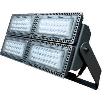 莱奥斯 LED投光灯 TGD1001功率LED 410W 白光,含支架,单位:个