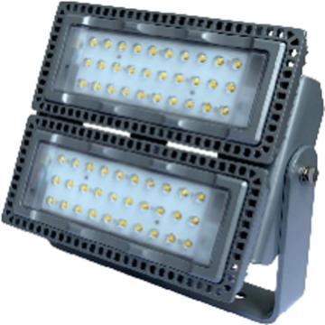 莱奥斯 LED投光灯 TGD1001功率LED 200W 白光,含支架,单位:个