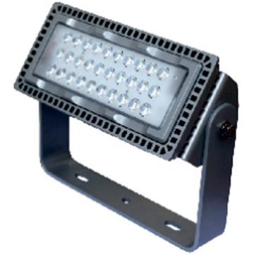 莱奥斯 LED投光灯 TGD1001功率LED 110W 白光,含支架,单位:个