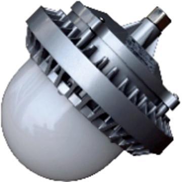 莱奥斯 LED平台灯 PTD1002功率LED 70W 白光,弯杆式不含弯杆,单位:个