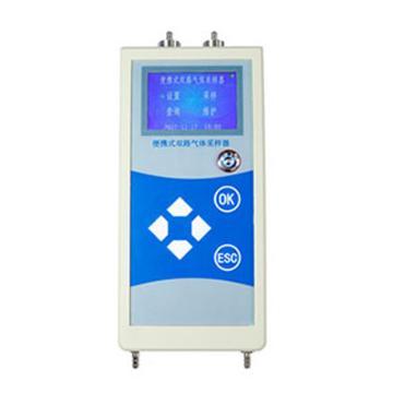 聚创环保 手持式双路恒流大气采样器,JCH-1200 D010103