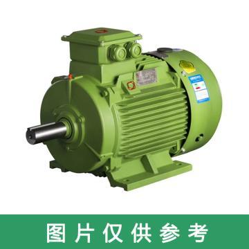 西域推荐 电机,30KW,YE3-200L1-2