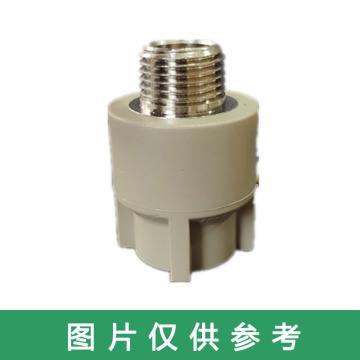 西域推薦 熱熔管外牙直接,PP-R公稱外徑50mm