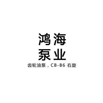 国产 齿轮油泵,CB-B6 右旋