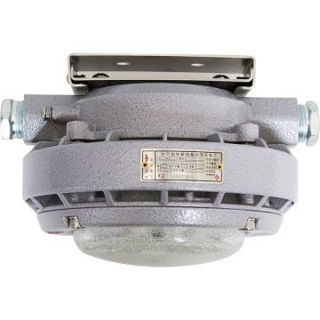 上海宝临 固态免维护平台灯,BL1602-20W,单位:个