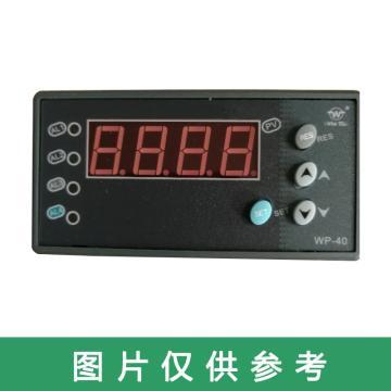 西域推荐 智能控制仪,WP-C403-01-23-HL-P