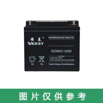 维基 蓄电池,MF12-65,12V,65AH